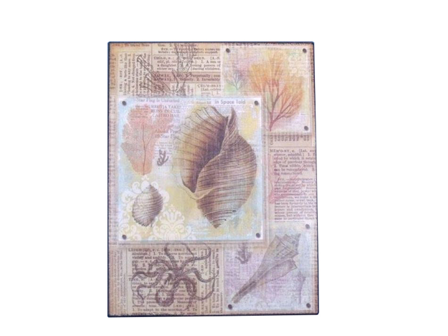 Metal Shell Nautical Wall Print 12