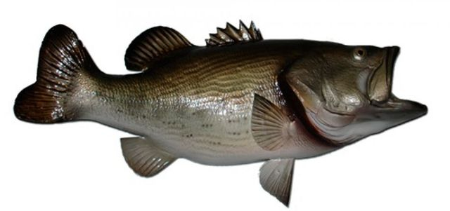 Largemouth Bass Fish Replica 28