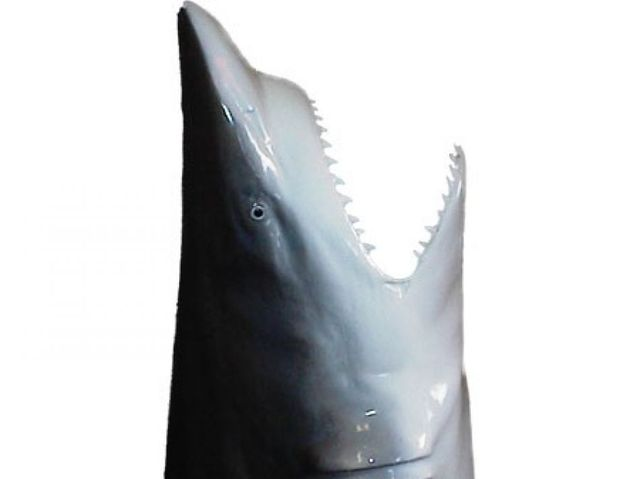 Shark Head Replica 18