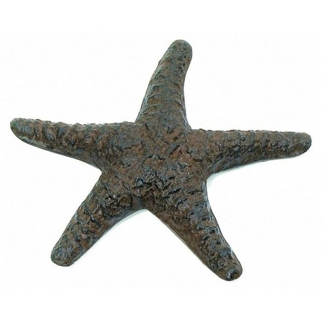 Rustic Cast Iron Starfish 8