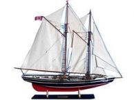 Bluenose Limited 35