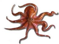 Orange-Brown Octopus Fish Replica 32
