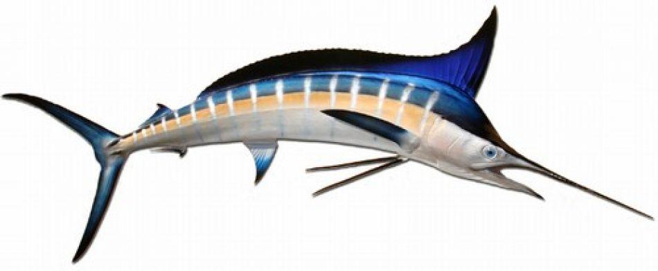 Buy Striped Marlin Fish Replica 90 Inch Beach Decor