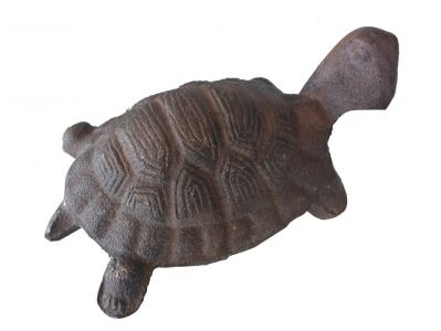 Rustic Cast Iron Turtle 5