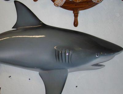Bull Shark Replica 67