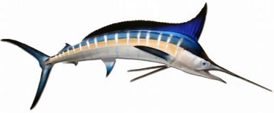 Striped Marlin Fish Replica 90
