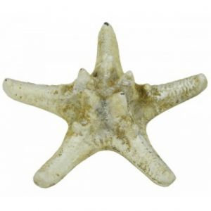 Rustic Cast Iron White Armour Starfish 5