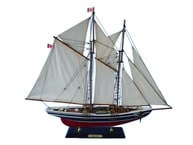 Bluenose Limited 25